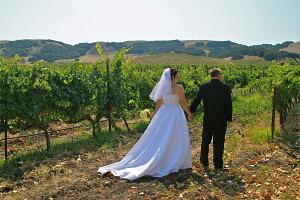 winery,wedding venue