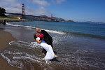 SF, Destination, Wedding, Budget